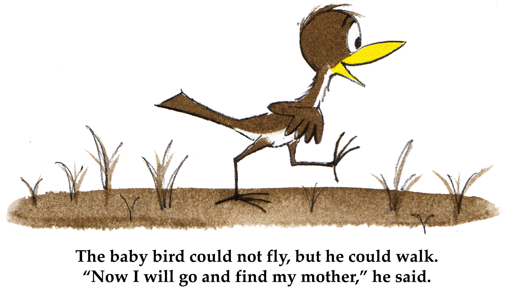 The baby bird could not fly, but he could walk.